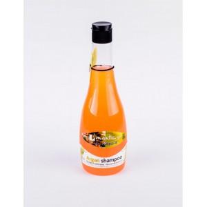 Шампунь для волос Argan Shampoo (восстановление, Mastic Spa) — 360 мл