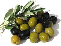 Маслины и оливки - в чем разница